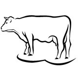 Cow sketch Royalty Free Stock Images