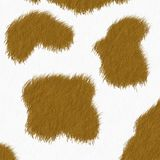 Cow skin background royalty free stock photography