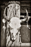 Cow skull. Hanging on post at Taos Pueblo in New Mexico Stock Photography