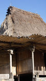 Cow skull detail of hut in Bena a traditional village with grass huts of the Ngada people in Flores. Stock Images