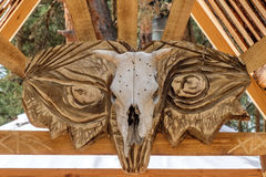Cow skull. At the entrance to the boards Royalty Free Stock Image