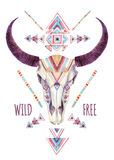 Cow skull in tribal style. Animal skull with ethnic ornament Royalty Free Stock Photo