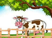 A cow smiling. Cow smiling under the tree royalty free illustration