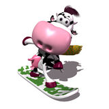 Cow on a snowboard. Having fun Stock Photography
