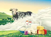 Cow, and splash of milk. Royalty Free Stock Images