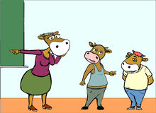 Cow and the students Stock Photography