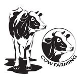 Cow stylized symbol and cow head portrait, farm animal. Cow stylized symbol and cow head portrait. Silhouette of farm animal, cattle. Emblem, logo or label for Royalty Free Stock Images
