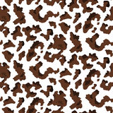 Cow texture Royalty Free Stock Photo