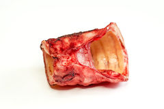 Cow throat Royalty Free Stock Images