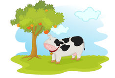 Cow under tree Royalty Free Stock Photos