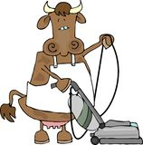 Cow using a vacuum. This illustration depicts a cow wearing an apron and using a vacuum cleaner Royalty Free Stock Image