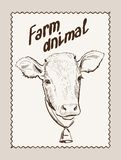 Cow vector hand drawn Royalty Free Stock Images