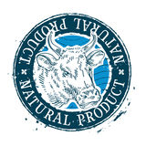 Cow vector logo design template. milk or beef Stock Photography