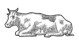 Cow. Vintage vector engraving illustration stock illustration