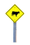 Cow warning sign Royalty Free Stock Photography