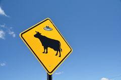Cow warning sign with ufo sticker Royalty Free Stock Images