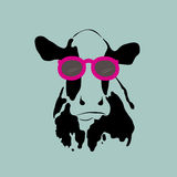 Cow wearing glasses. Stock Photo