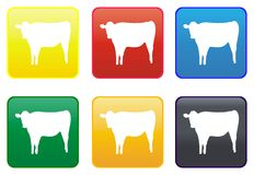 Cow web button Stock Photography