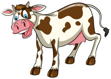 A cow Royalty Free Stock Images