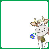 Cow on a white square Royalty Free Stock Images