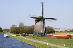 Cow windmill and tulips Stock Photography