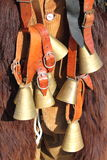 Cowbells Stock Image