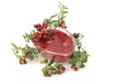 Cowberries μαρμελάδα Στοκ Εικόνες