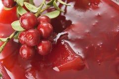 Cowberries μαρμελάδα στοκ φωτογραφίες με δικαίωμα ελεύθερης χρήσης