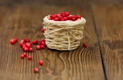 Cowberries στο καλάθι Δασικό μούρο Στοκ εικόνα με δικαίωμα ελεύθερης χρήσης