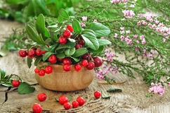 Cowberries and common heather flowers on rustic surface. Cowberries in wooden bowl and common heather flowers on rustic surface Royalty Free Stock Images