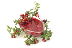 Cowberries jam Stock Images