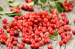 Cowberries on table Stock Photo
