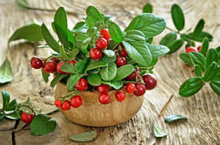 Cowberries in wooden bowl. On rustic surface Royalty Free Stock Photography