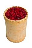 cowberry εμπορευματοκιβωτίων &pi Στοκ εικόνα με δικαίωμα ελεύθερης χρήσης