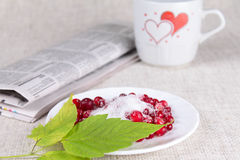Cowberry against a mug with hearts Royalty Free Stock Image