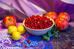 Cowberry and apples Royalty Free Stock Image