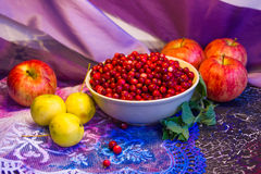 Cowberry and apples_1 Royalty Free Stock Photos