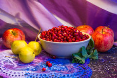 Cowberry and apples Royalty Free Stock Photos