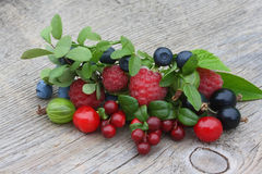 Cowberry, bilberry, gooseberry, blueberry, currant, cherry, rasp Royalty Free Stock Image