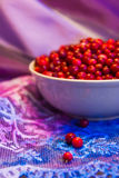 Cowberry Royalty Free Stock Images