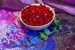 Cowberry and mint Royalty Free Stock Photography
