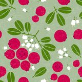 Cowberry seamless pattern. Black currant with leaves and flowers on shabby background. Original simple flat illustration. Shabby style royalty free illustration