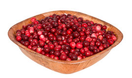 Cowberry in square wooden plate. corner to the vie Stock Image