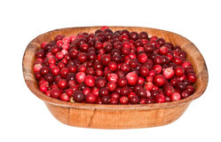Cowberry in square wooden plate. Stock Images