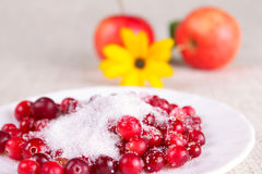 Cowberry in sugar against apples and a flower. Removed close up Royalty Free Stock Photos