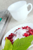 Cowberry in sugar against a mug with newspapper Stock Image
