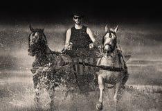 Cowboj in carriage Stock Photo