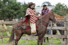 Cowboy à cheval en Equateur Images libres de droits