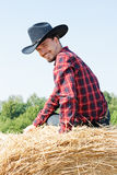 Cowboy Royalty Free Stock Image