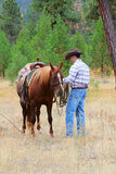 Cowboy. Working his horse in the field royalty free stock photos